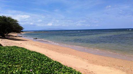 Maui Sunset 507A