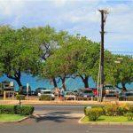 Maui Parkshore view