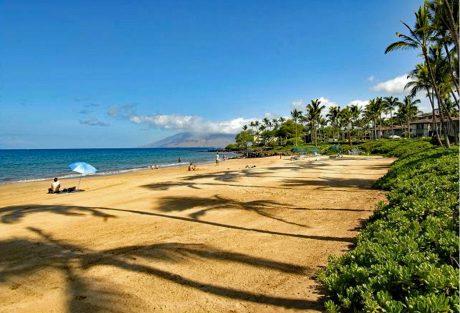Ho'olei_beach