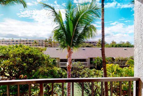 Kihe Akahi C410 Maui