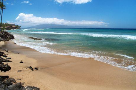PIKA6_beach