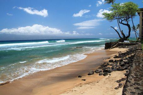PIKA6_beach1