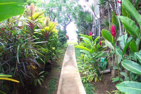 Pikake_walkway(1)