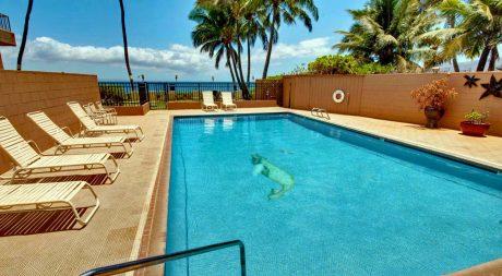 Nani Kai Hale Pool