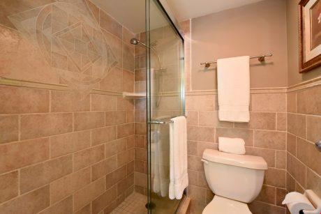 V0509_shower