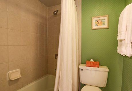 V0806_tub_shower