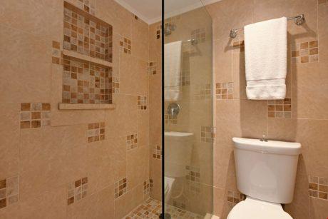 V0809_shower