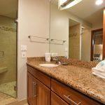 ZC403_guest_bathrm_shower
