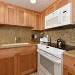 ZD309_kitchen1