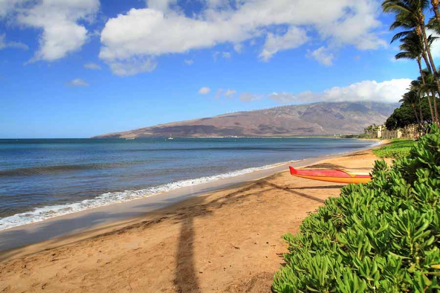 Napili Beach Front Resort