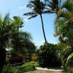 Maui Kamaole C109