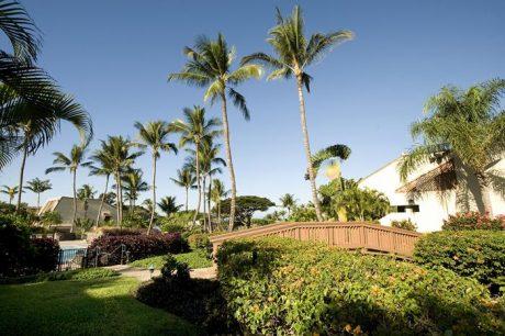 Maui Kamaole C110