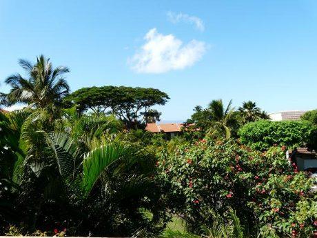Maui Kamaole D206