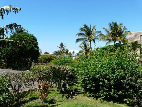 Maui Kamaole F101