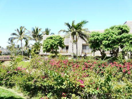 Maui Kamaole F103