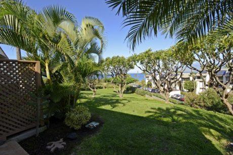 Maui Kamaole H110