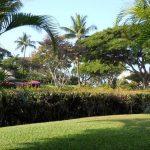 Maui Kamaole I105