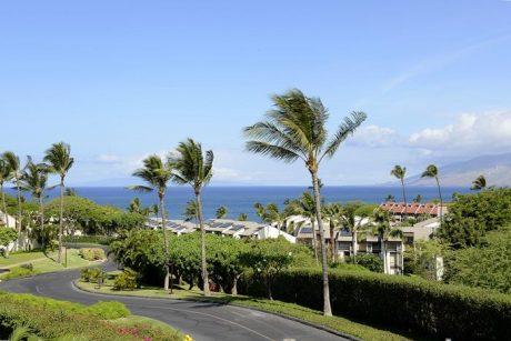 Maui Kamaole J220