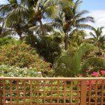 Maui Kamaole K204