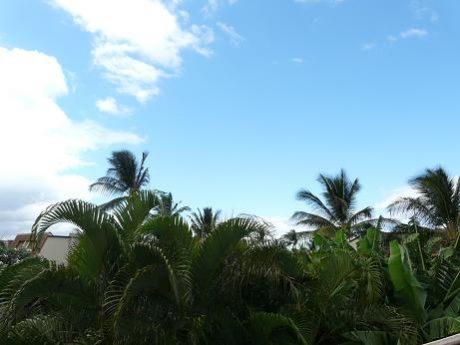 Maui Kamaole K207