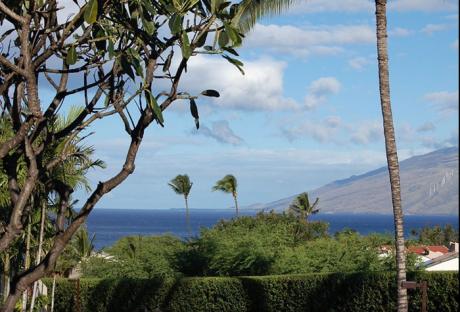 Maui Kamaole L102