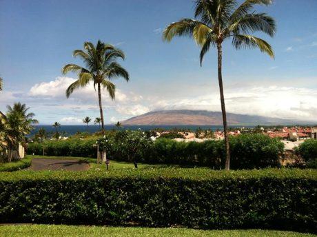 Maui Kamaole L103