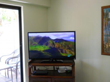Maui Kamaole L107