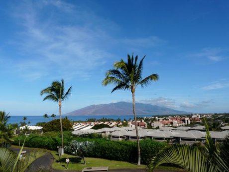 Maui Kamaole L203