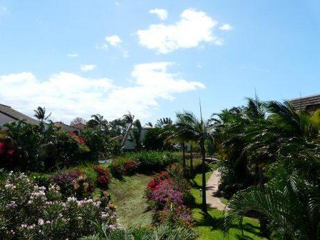 Maui Kamaole M210