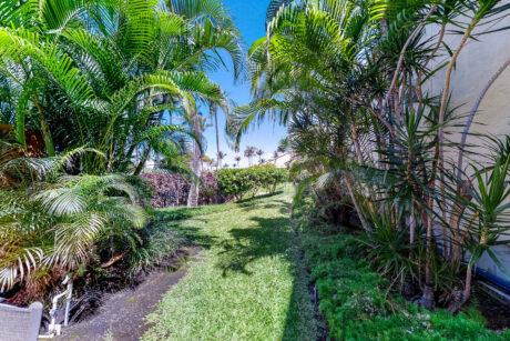 Maui Kamaole C108