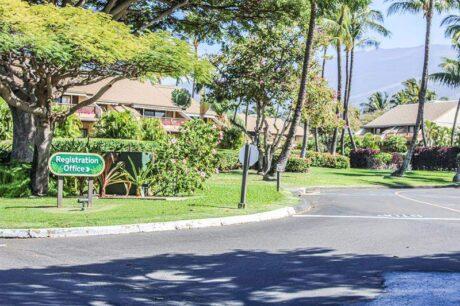 Maui Kamaole G214