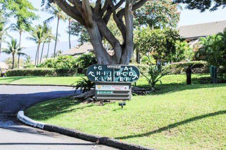 Maui Kamaole K-208