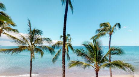 Sugar Beach 530
