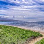 Sugar Beach 536
