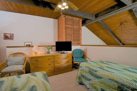 Flat screen TV provided in overhead loft