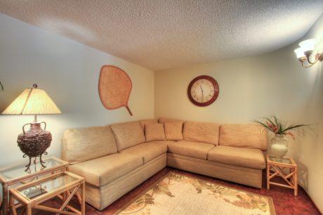 Our den includes a very comfortable queen sectional sleep sofa/TV/DVD