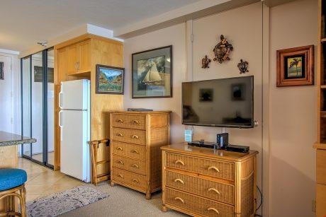 Entertainment sys. Refrigerator & extra closet