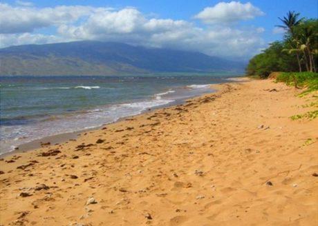 Beach near Kihei Garden Estates