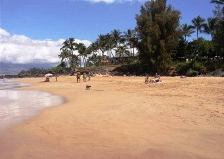 Kamaole Beach #1 Just Across The Street From Kihei Akahi