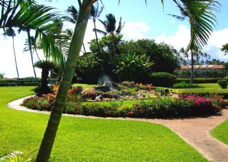Courtyard grounds