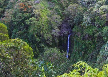 View waterfalls along the road to Hana.