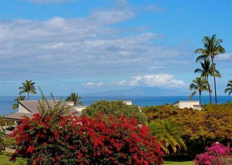 Great Ocean Views