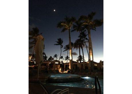 Palms at Wailea Pool