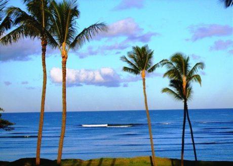 Leinaala #104 Oceanview
