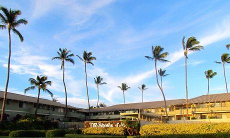 Shores of Maui (14)