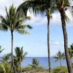 Maui Kamaole A215