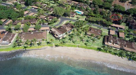 1393 beach picture
