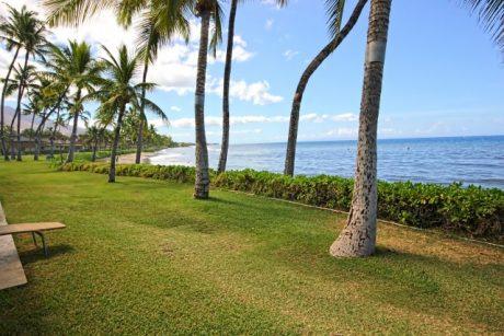 Beachfront.jpg (1)