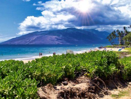 Enjoy the Beautiful Beach! - Kamaole 2 boasts beautiful views of the West Maui Mountains, natural sand dunes, and nearby restaurants.