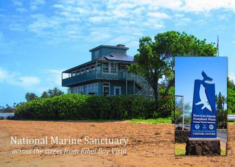 Kihei Bay Vista is across the street from the National Marine Sa